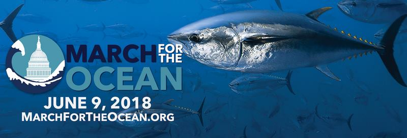 March for the Ocean June 9!