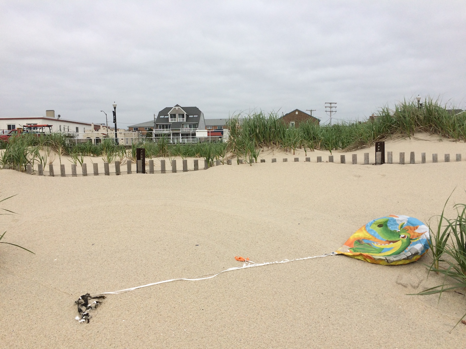 VICTORY! LONG BRANCH OFFICIALLY BANS INTENTIONAL BALLOON RELEASE!
